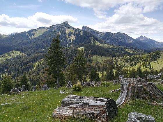 Aktuelle Angebote Bergfr�hling 2016