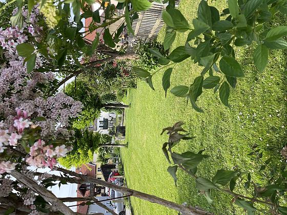 Ferienwohnung Bergblick Familie Heiss - Wellness