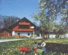 Ferienwohnungen Ernst - Seeshaupt